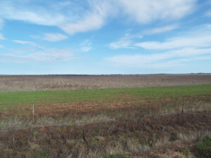 11/29 160± Acres • Surface & Minerals Tillman County Oklahoma