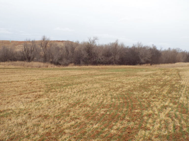 93 Acres MOL Cropland/Timber Enid OK