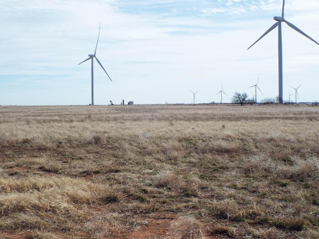 160± Acres Grass Pasture & Cropland