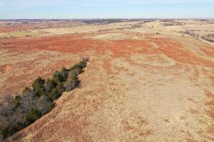 Drone Grassland