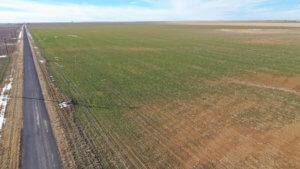 1,560± Acres cropland