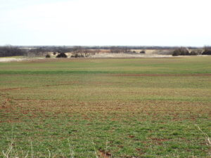 3/12  160± ACRES * FAIRMONT * DOUGLAS OKLAHOMA