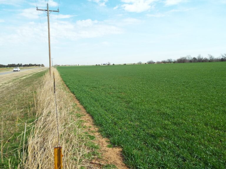 5/10 116.30± ACRES * CROPLAND * HIGHWAY FRONTAGE * Offered in 2 Tracts