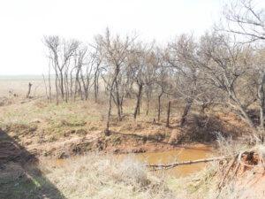 Cropland & Minerals