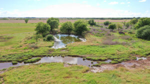 7/19 160± ACRES * GRANT COUNTY, OK. * MEDFORD AREA