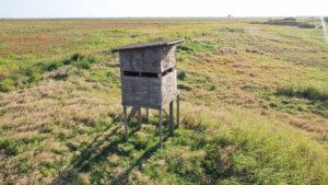 LeForce Land Livestock