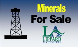 8/20  Online Only Mineral Auction