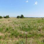 80 Acres Development