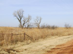 4-10± Acre Building Sites Phillips & N Imo Rd  Enid OK